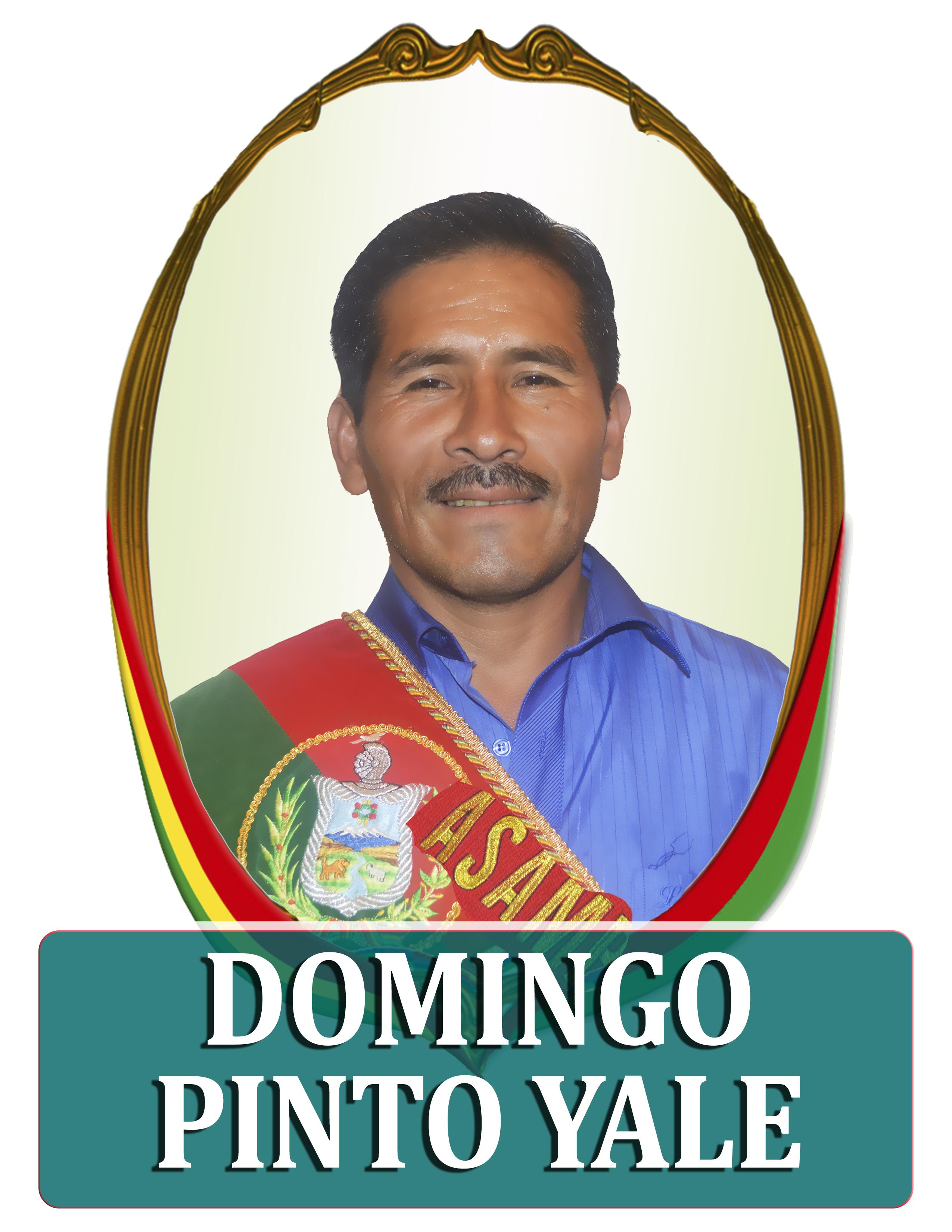 DOMINGO PINTO YALE