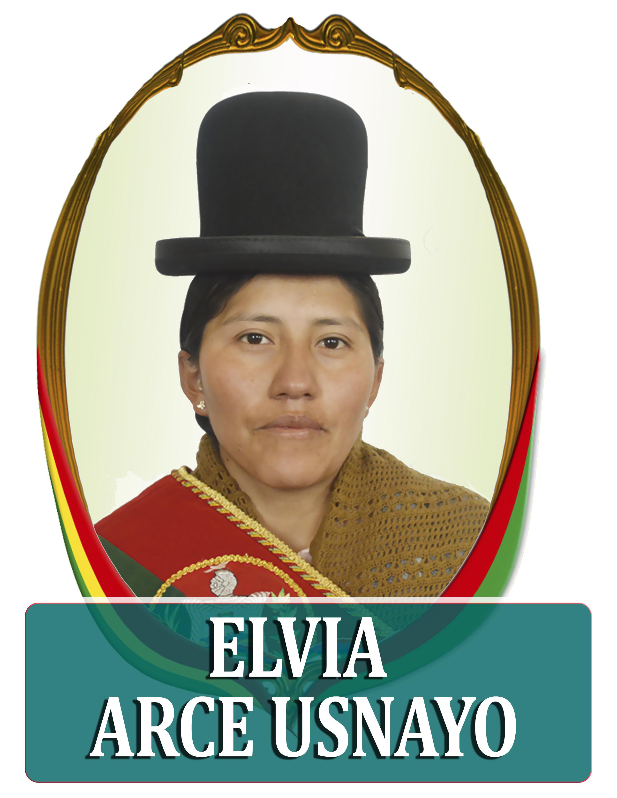ELVIA ARCE USNAYO